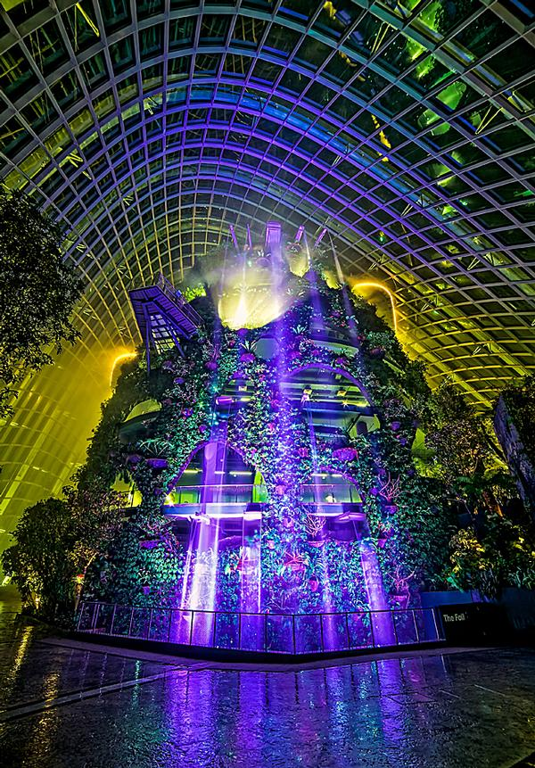 The Cloud Forest Dome features an artifical, plant-covered mountain, which visitors can climb