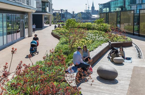 DPS have designed a series of 12 public gardens as part of the King's Cross development in London