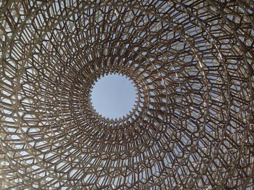 A view from inside the Hive, designed by Wolfgang Buttress and BDP for the UK pavilion / @WButtress