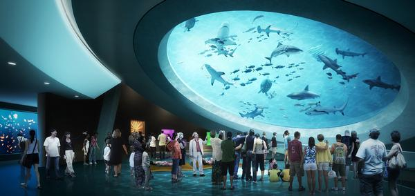 A rendering shows the mezzanine in the Frost Museum of Science in Miami, Florida, which opens in 2016
