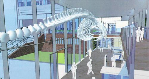 The fully-renovated museum will reopen in 2016 / Cambridge University