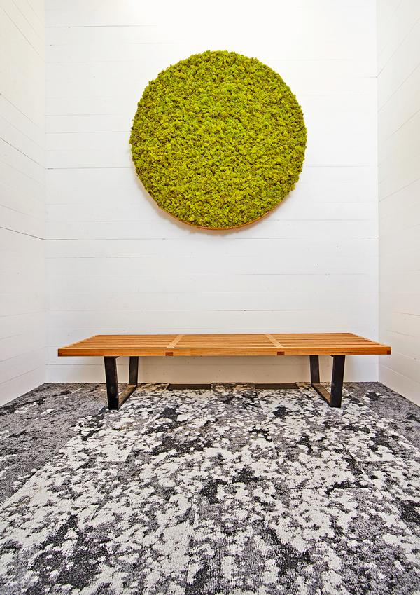 Artwork includes this moss art sculpture by biophilic designer Joe Zazzera