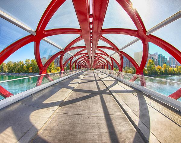 Peace Bridge, Calgary, Canada / PHOTO: shutterstock.com