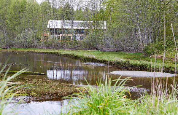 The goal was to create a house that allows for the natural world to thrive