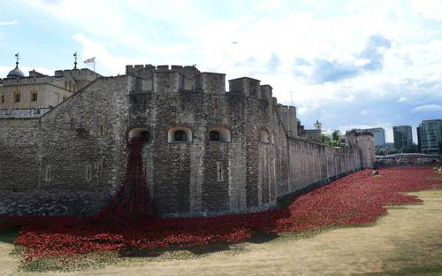 Poppies will be laid until Armistice Day on 11 November