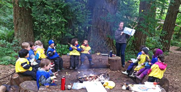 The classroom is an exciting open forest