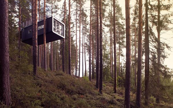 Northern Sweden's Treehotel boasts a choice of seven unique accommodations