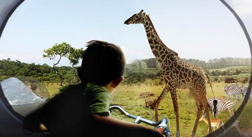 Bjarke Ingels wants to revolutionise the relationship between a zoo's visitors and its inhabitants / BIG