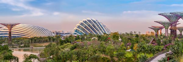 Gardens by the Bay is a key part of the government's vision to create a 'city in a garden'