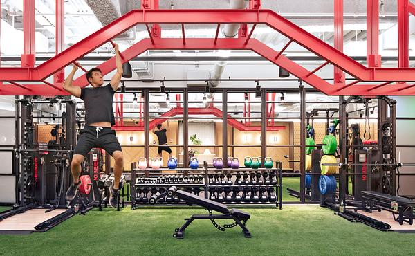 playful gym experience; artificial grass adds interest to the workout space / Rise photos: Kris Tamburello