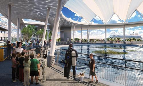 The museum will feature a large-scale aquarium as one of its main attractions / Patricia and Phillip Frost Museum of Science