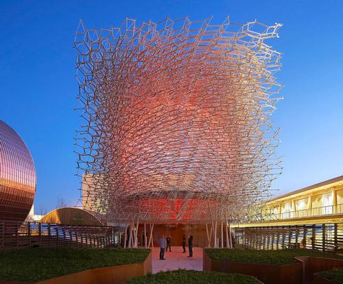 The Hive won the BIE Gold Award for Architecture and Landscape at the 2015 Milan Expo  / Wolfgang Buttress