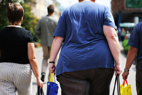 Operators 'increasingly investing' in obese-friendly equipment