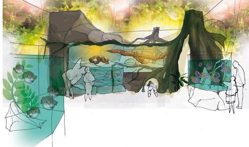 Brighton Sea Life Centre to open Rainforest Adventure this month