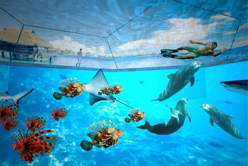 OVA Studio prototype brings the oceans to life with 3D Swimarium