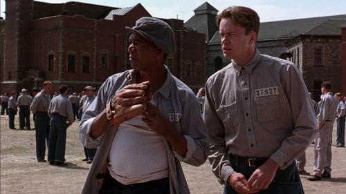 <i>The Shawshank Redemption</i> was a flop at the box office but a major hit following its home release / Columbia Pictures