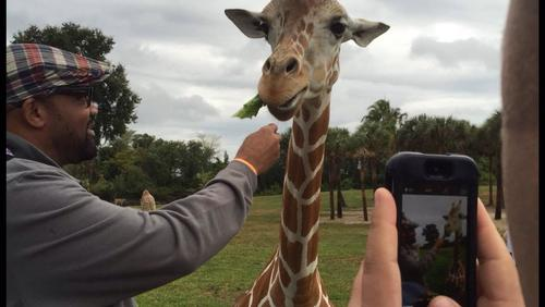 IAAPA 2014: AZA chair urges zoos to be business savvy