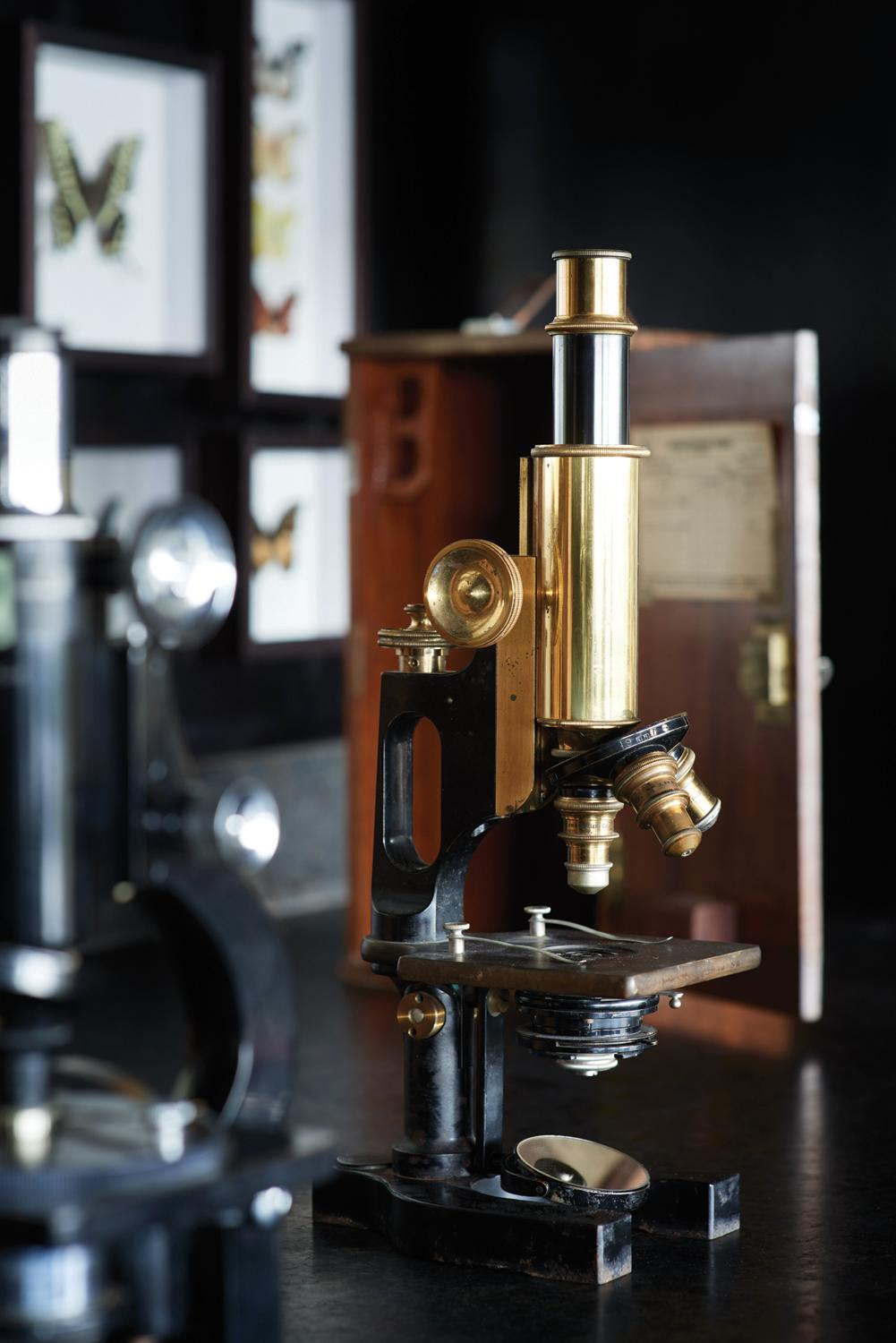 Scientific equipment once used by intrepid explorers are dotted around the lodge / Belmond Eagle Island Lodge Botswana