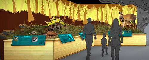 The interactive museum has been designed by Huntsville-based Fuqua & Partners Architects / Cook Natural Science Museum