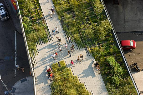 Tales from the High Line