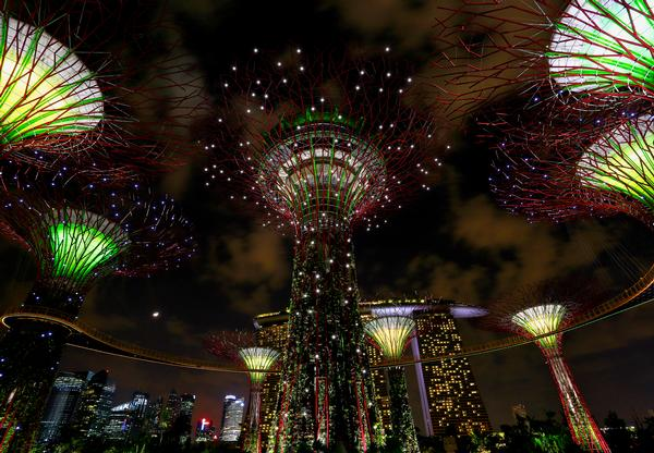 The supertrees provide shade by day and come alive with lighting and projected media by night. Some of them feature photovoltaic cells and some act as air exhausts for the cooled conservatories