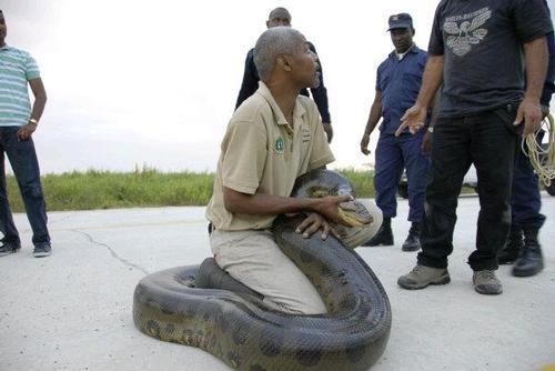 Staff from Trinidad zoo head to Orlando for training