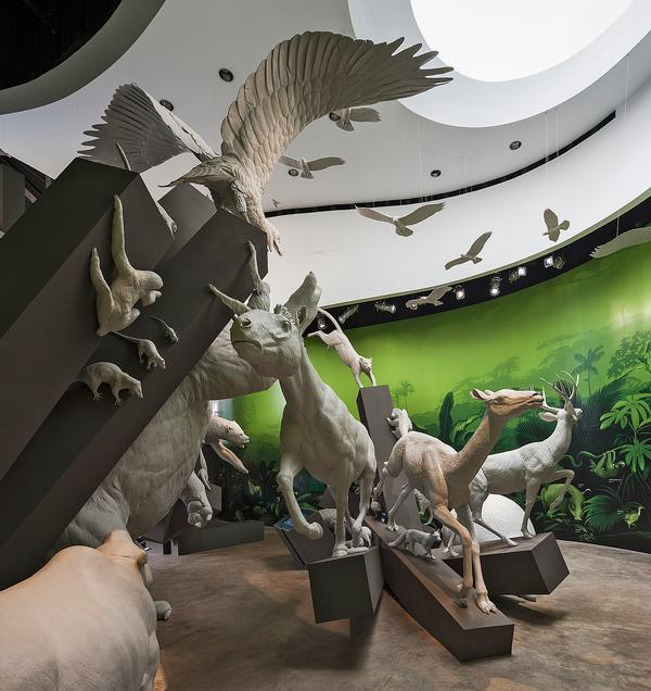 In the Worlds Collide exhibit, life size statues of animals stampede to illustrate what happened when Panama was formed