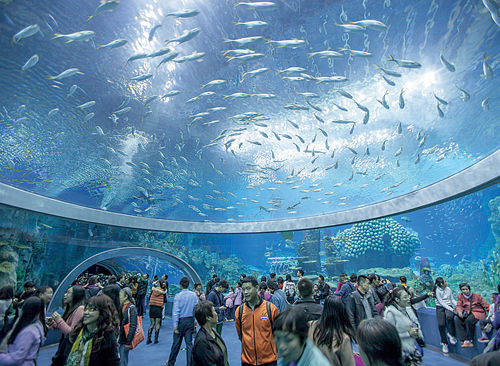 Largest aquarium debuts in China