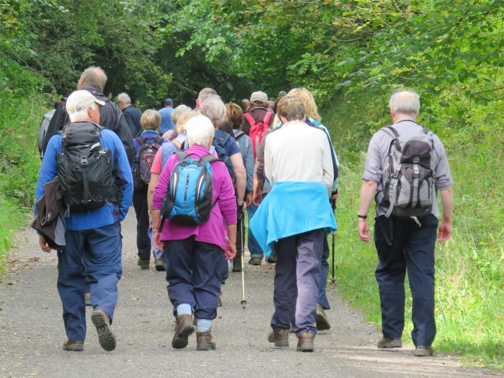 Morgan's patients organise and lead their own walking group