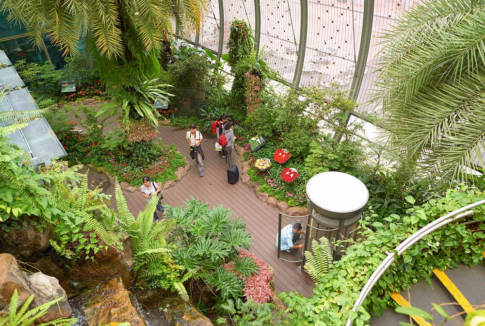 The opportunity to carry out research in an immersive environment can arise at any time – Lukas found much to study during a layover at Changi Airport, Singapore