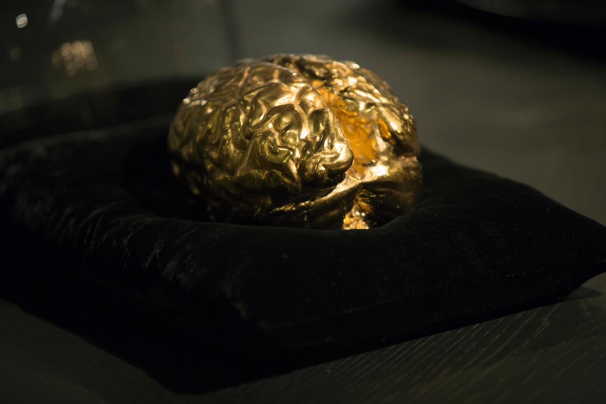 The scupture derived from a 3D scan of Foster's brain / David Vexelman