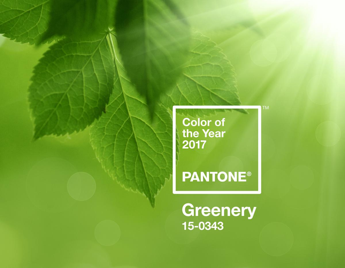 According to Pantone, its 15-0343 Greenery shade 'evokes the first days of spring when nature's greens revive, restore and renew' / Pantone