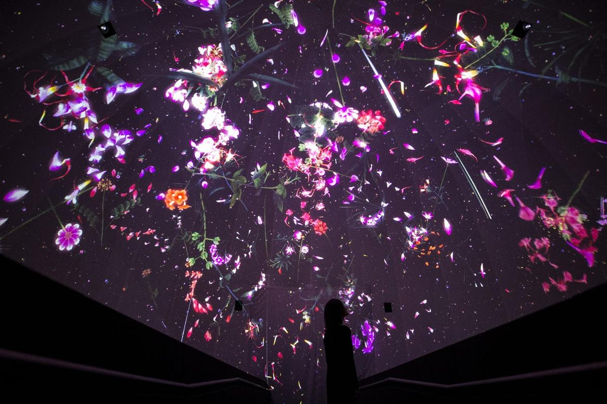 Entering at the top of the three-storey structure, visitors enter through a dark room projecting falling petals across the ceiling