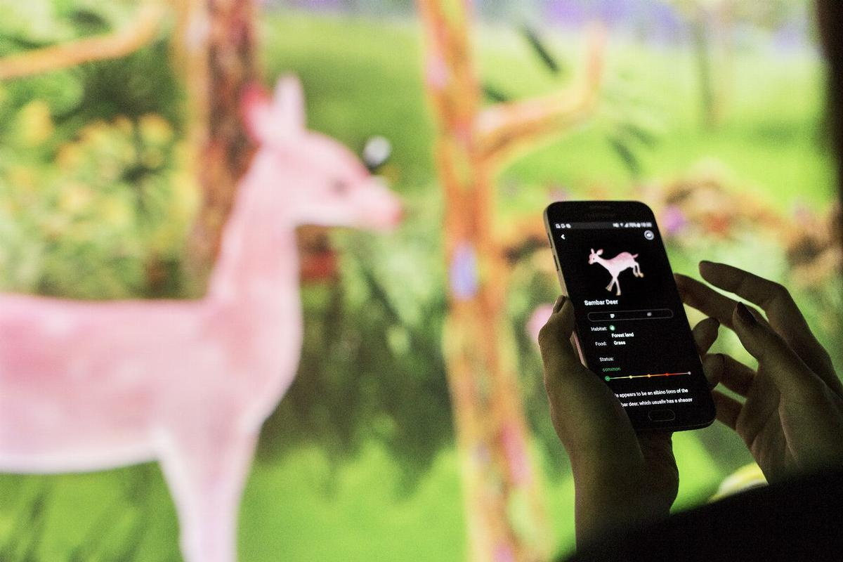 The exhibition also introduces augmented reality to the experience, with users downloading a free app to find animals