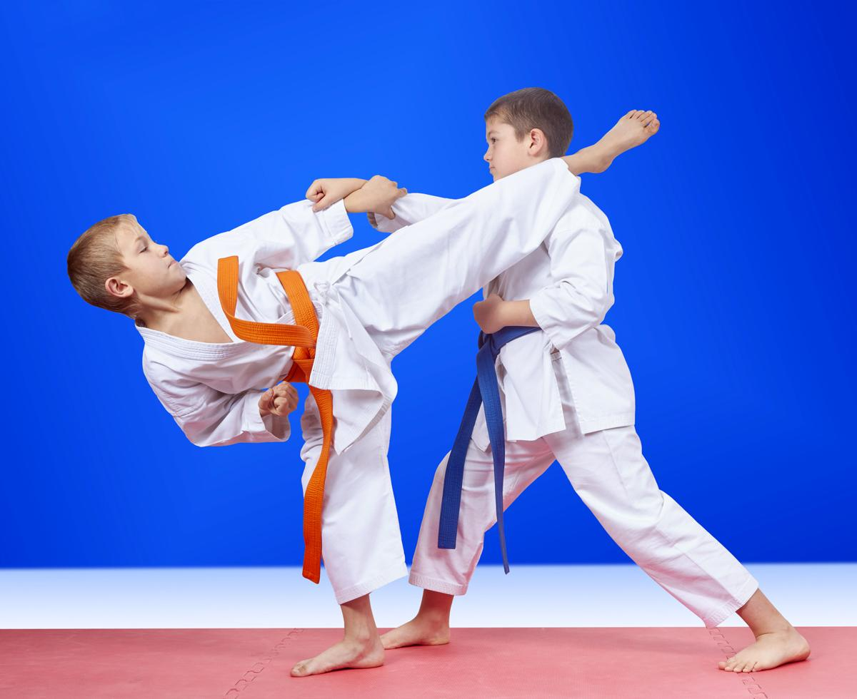 Kuper said that few kids in Britain could play judo, fencing or equestrianism near their homes / Kaderov Andrii/Shutterstock.com