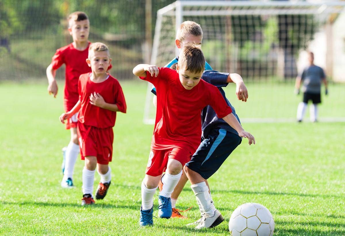 Schools should be ultimately responsible for the physical activity of students, said ukactive and the Sport and Recreation Alliance