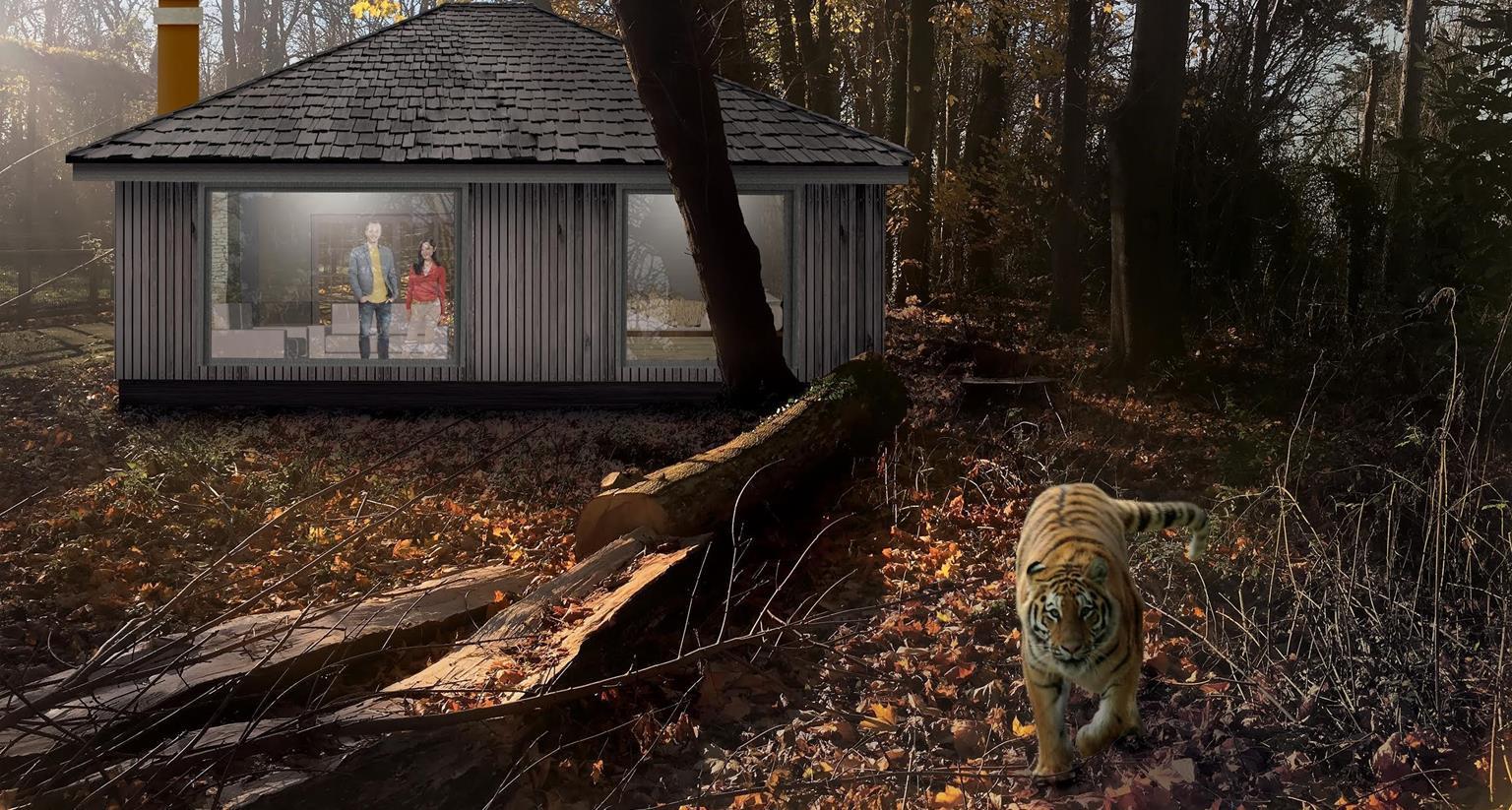 tiger nørrebrogade
