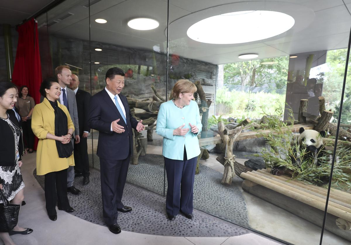 panda diplomacy plays part as zoo berlin launches new 10m enclosure. Black Bedroom Furniture Sets. Home Design Ideas