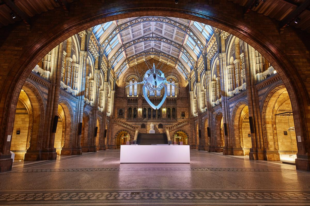 This is the hall's first major refurbishment since the 1970s / NHM