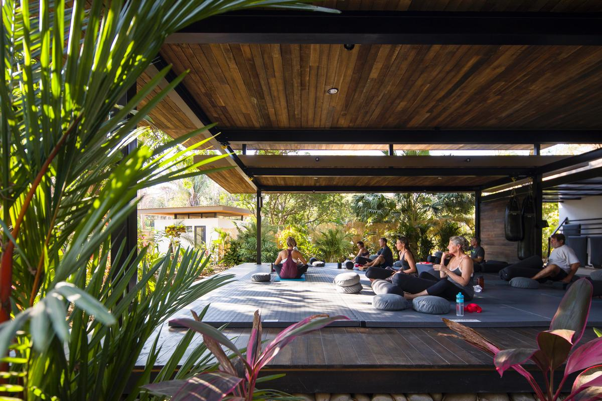 Studio Saxe were commissioned to design the hotel, which includes a yoga studio and multipurpose gym space surrounded by trees / Studio Saxe