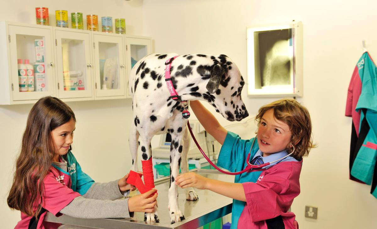 KidZania's new Pet Wellbeing Centre includes role-play situations where children learn about animal welfare needs / KidZania