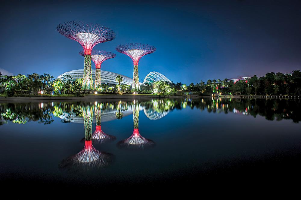 Gardens by the Bay, Singapore / PHOTOS: Atelier Ten