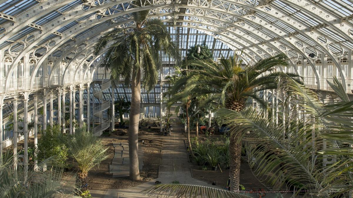 The Temperate House interior - before the plants go back in / © Board of Trustees, RBG Kew