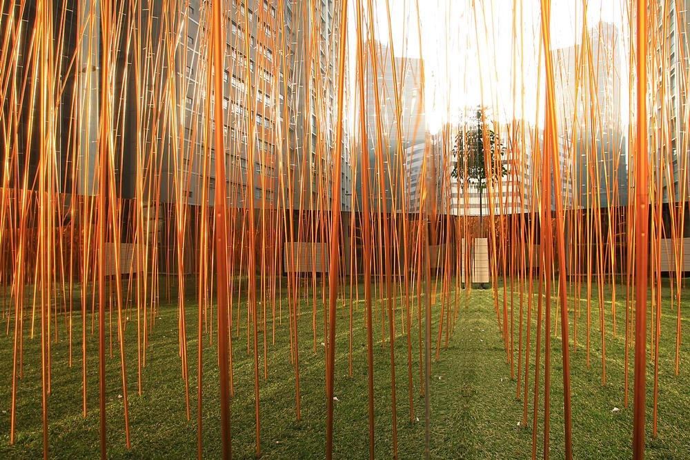 Eskiyu's Industrial Forest has been used as a play space and a home for psychedelic mushrooms
