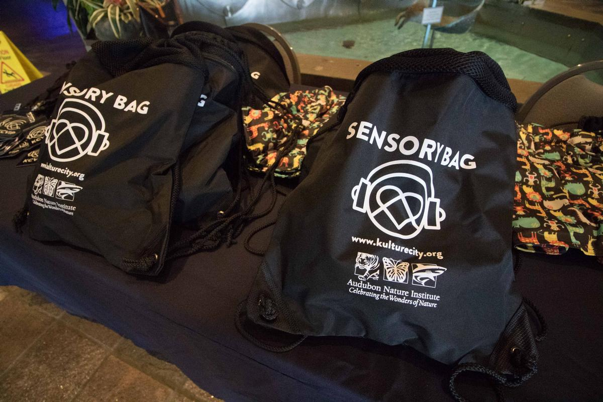 'Sensory bags' are also made available, which include noise-canceling headphones,