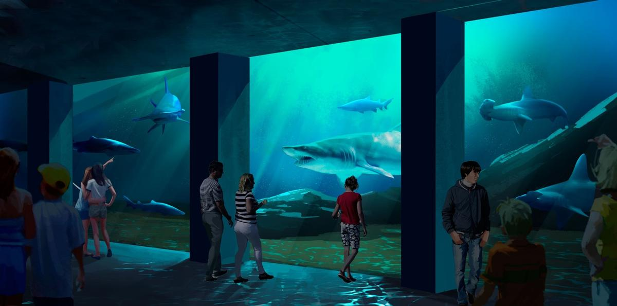 Called Expansion 2020, the plan features the new shark habitat and a redesigned entrance