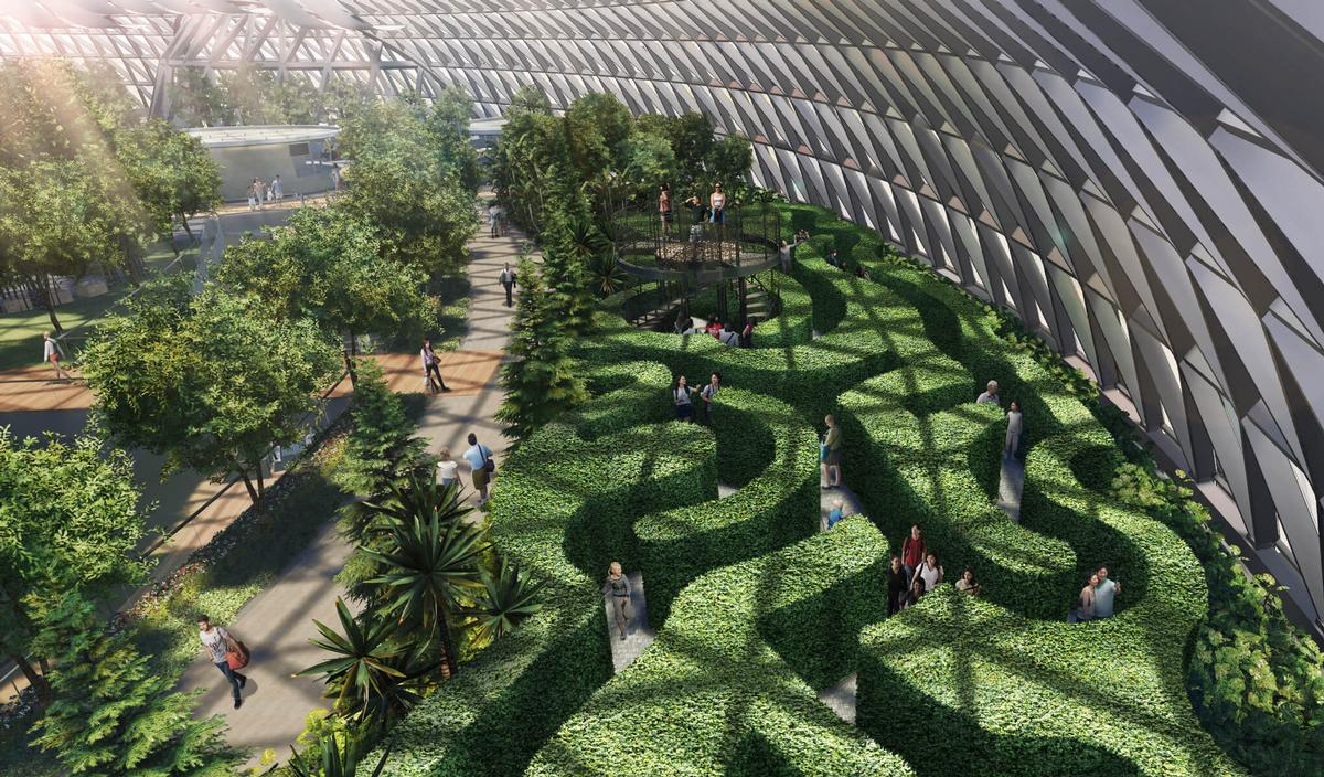 Mazes will feature in the attraction / Changi Airport