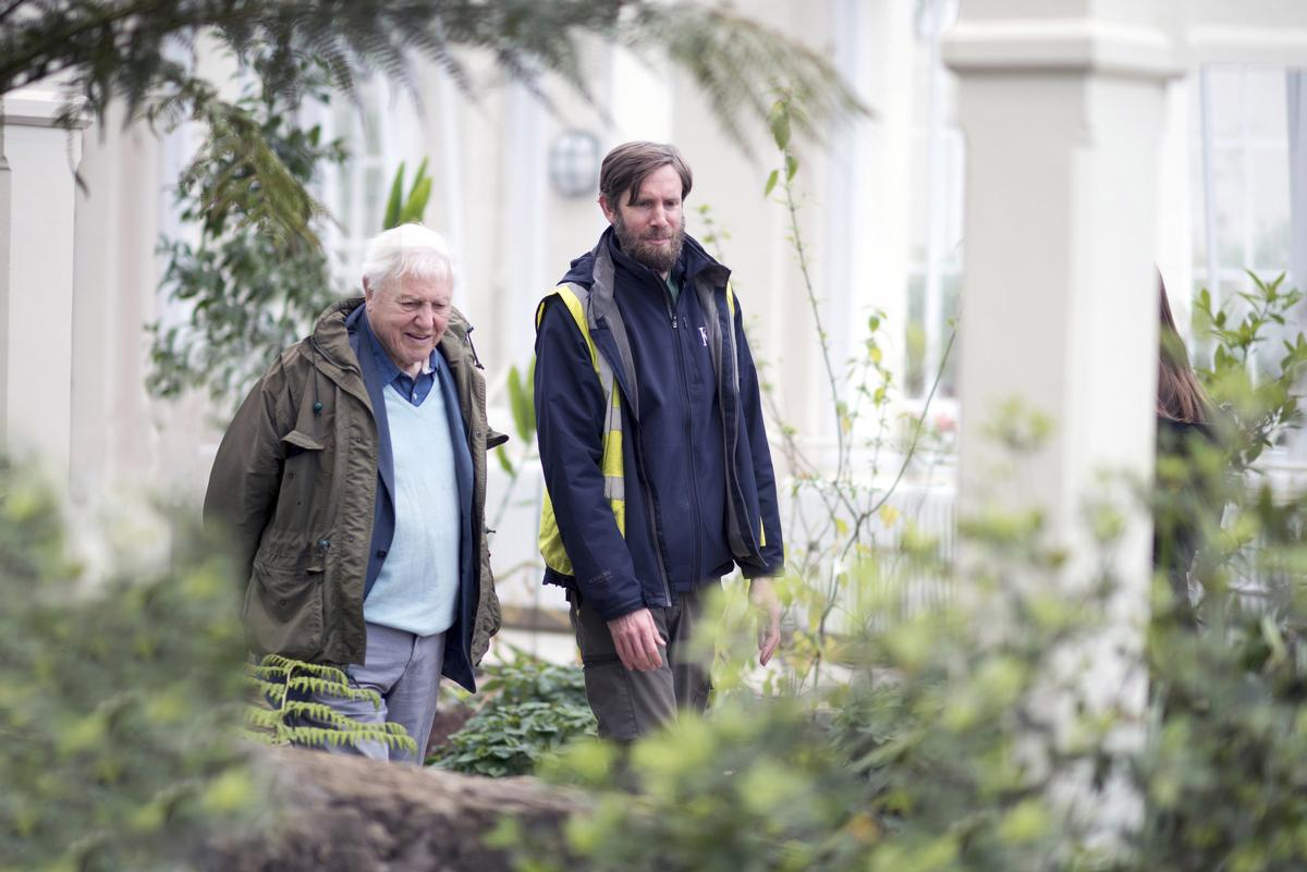 Famed naturalist and broadcaster Sir David Attenborough re-opened the Temperate House on 5 May