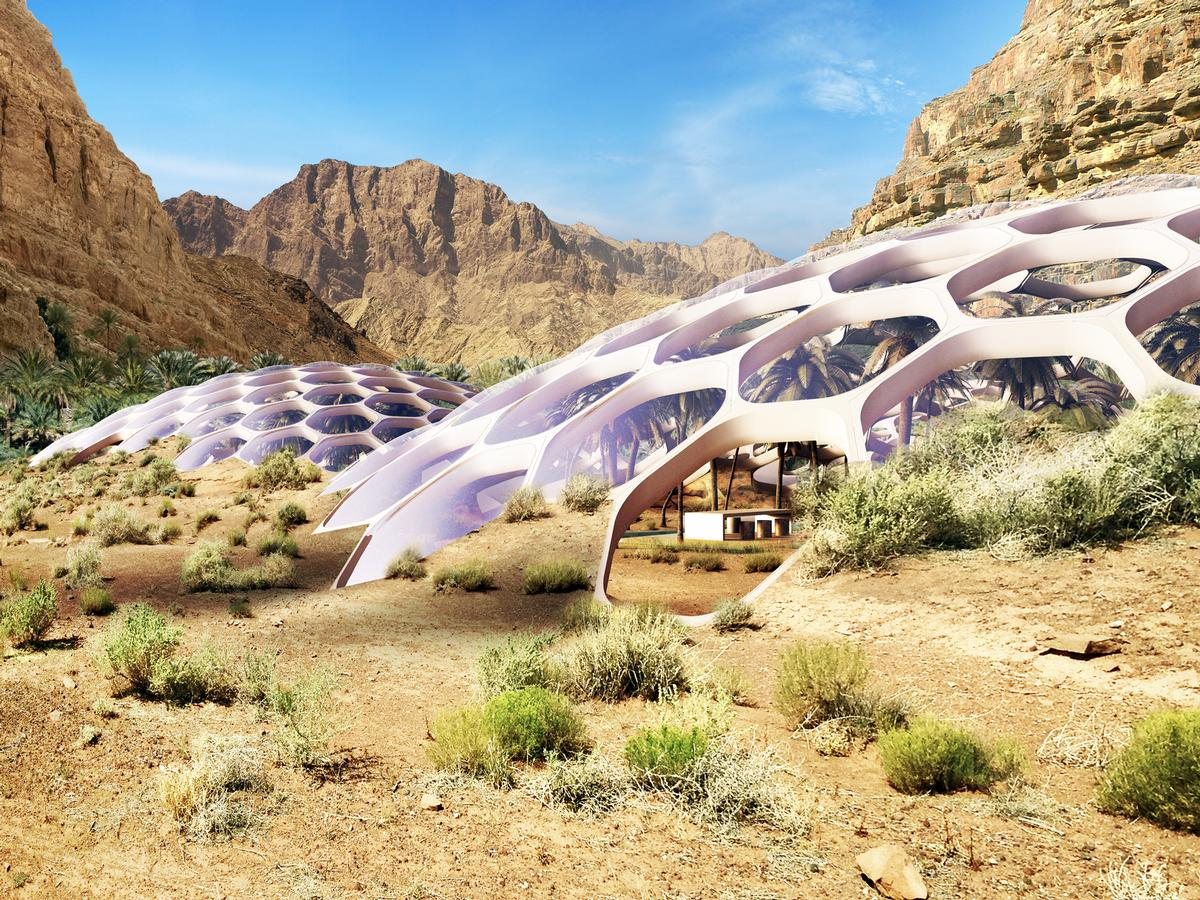 The domes will be powered by 100 per cent renewable energy, and recycled wastewater will be used for irrigation / Baharash Architecture