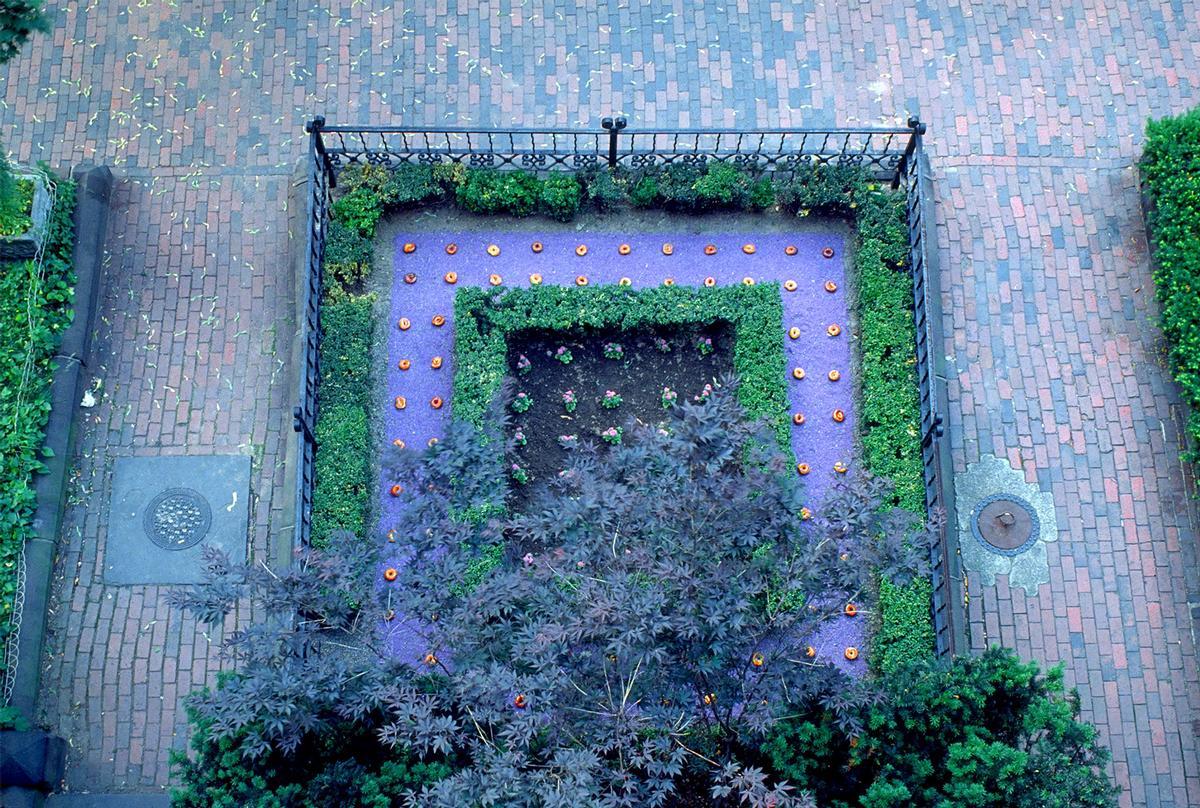 Martha Schwartz's Bagel Garden